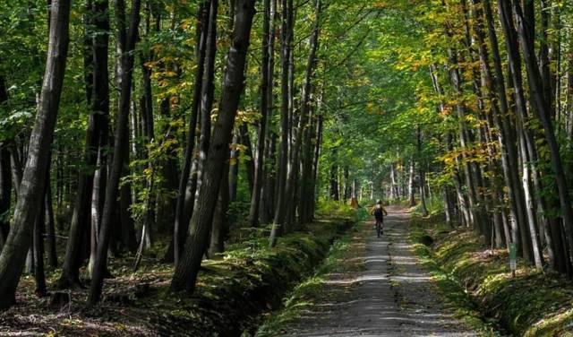 Randonnée VTT en forêt de La Croix aux Bois