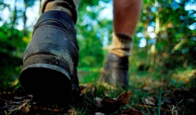 Balade à pied: Le circuit des écluses