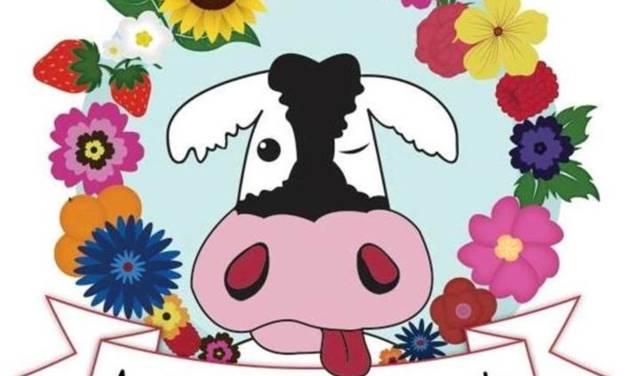Au bon lait de Marguerite