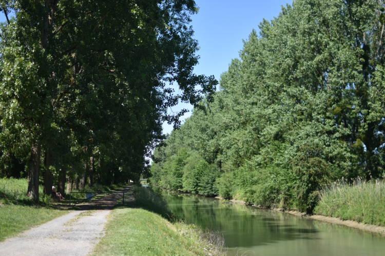 Bord du canal Aisne - Hecquet Andréa (15).jpg