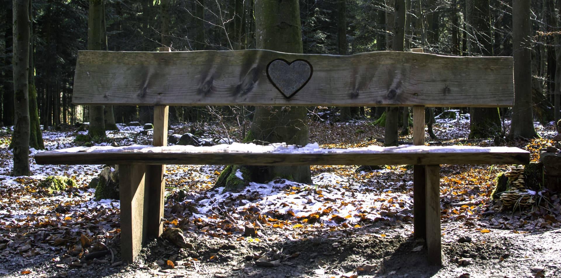 PAD_Saint-Valentin_amour_Hiver_banc_parc_loup_Header_Unsplash_1920x951.jpg