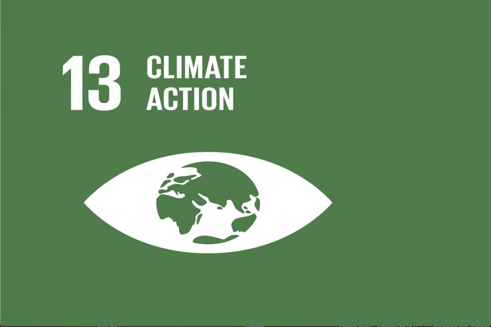 13 climate logo