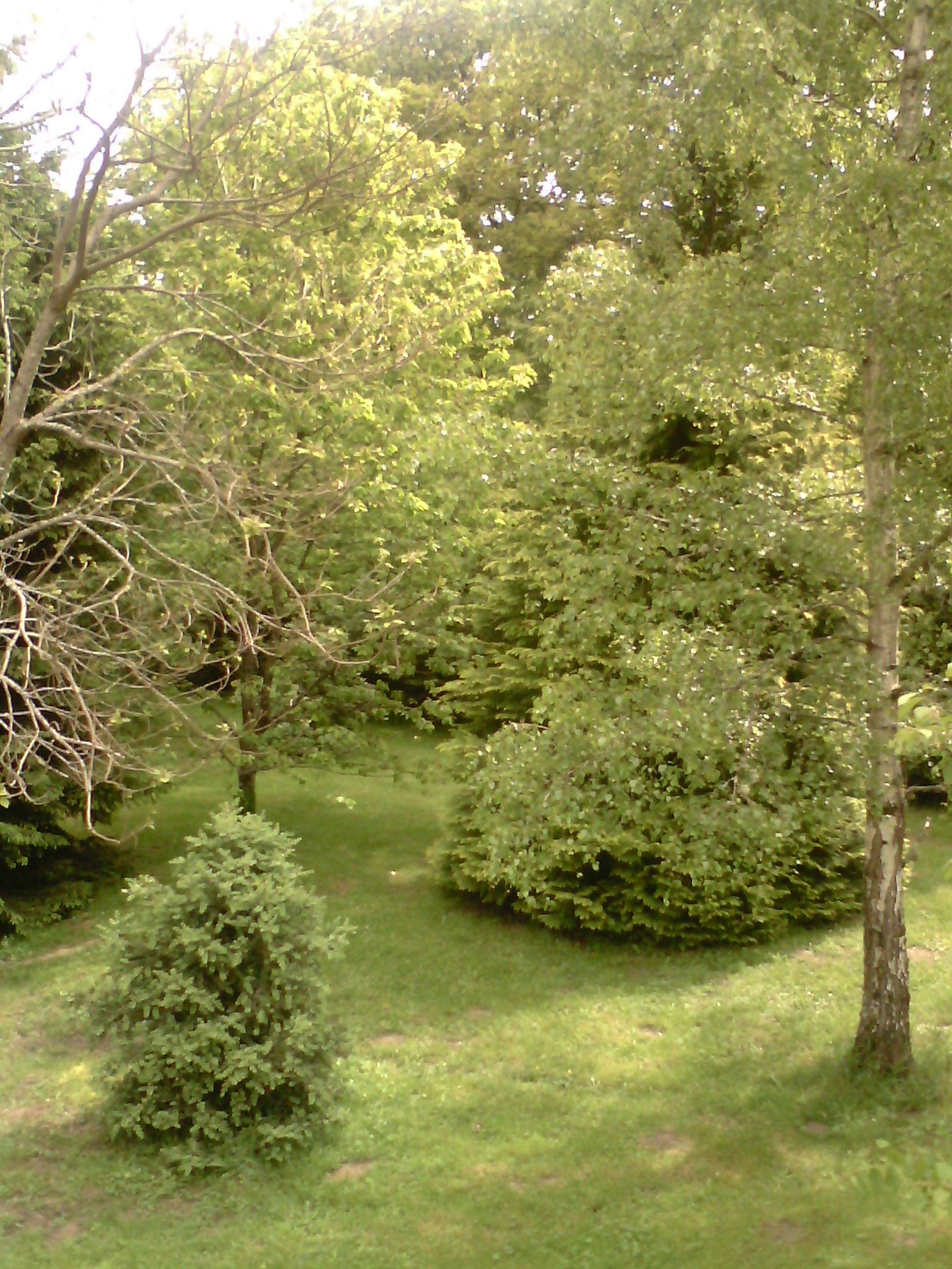 Chambre-Colocation Chamboret NA & Location Chambre à louer Chamboret NA | Loue chambre meublée Chamboret NA | Logement Chamboret NA