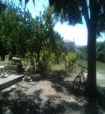 Chambre-à-louer-Pouzols-olivier