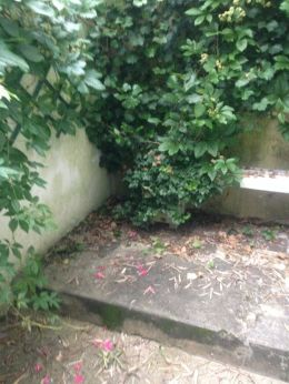 Chambre-à-louer-Biarritz-sososo