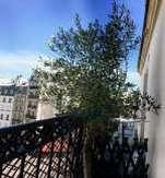 Chambre-à-louer-Paris 1er arrondissement-Fab75F