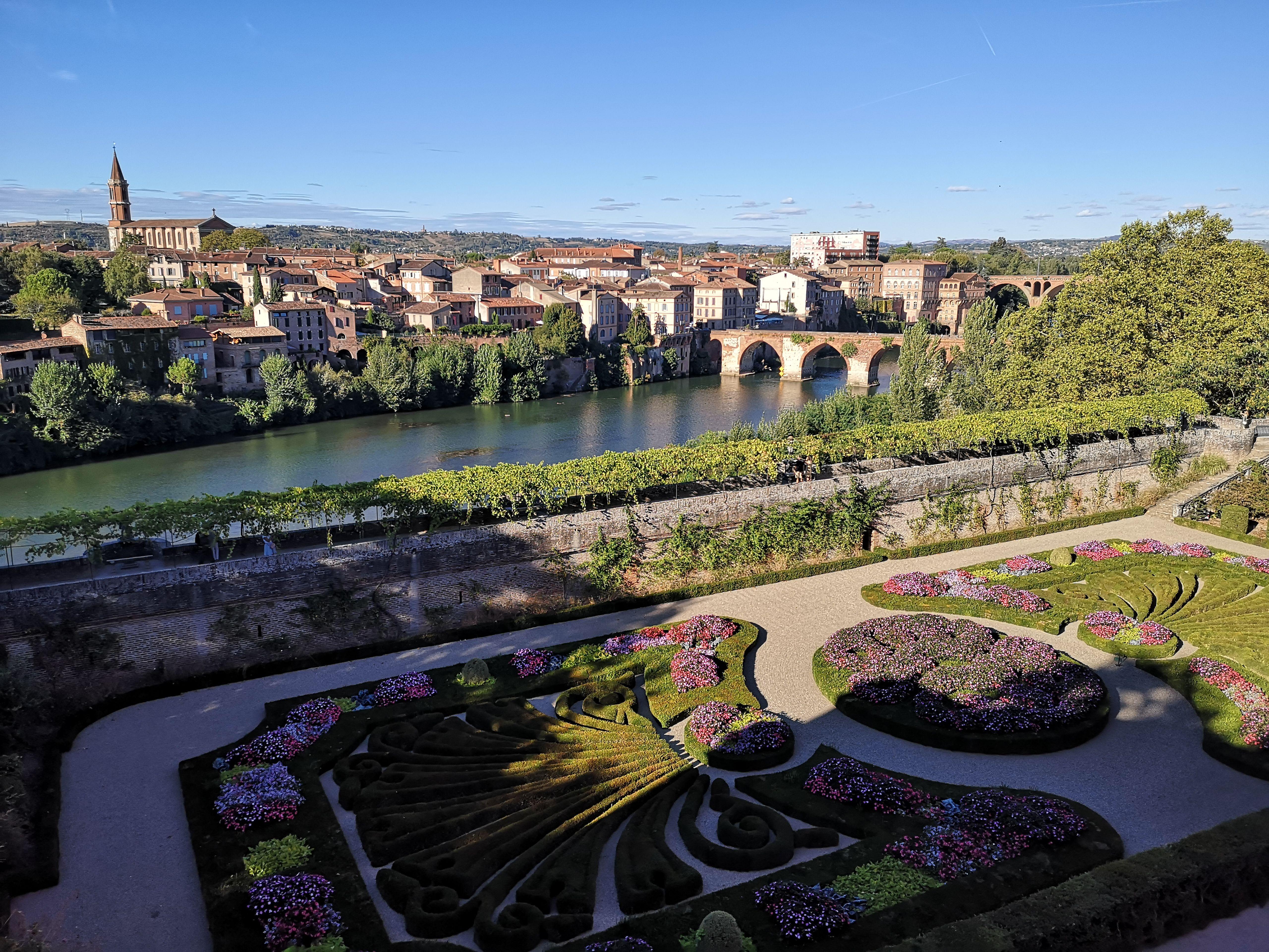 Location-chambre-Toulouse-polyglotte
