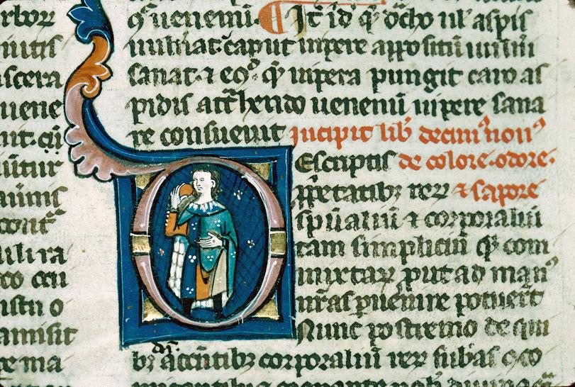 Proprietatibus rerum (De)
