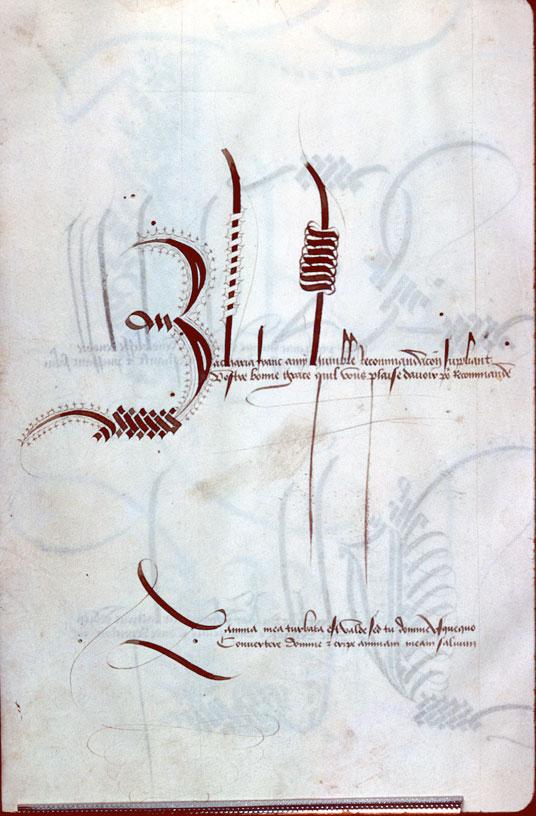 Alphabet calligraphié