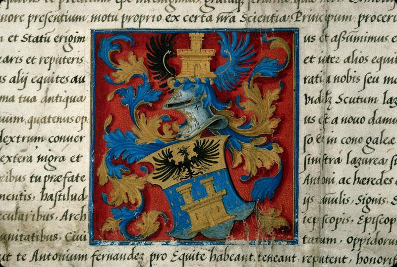 Lettres de noblesse décernées par Charles Quint - Armes (à identifier)_0