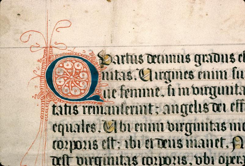 Gradus sacratissimae scalae