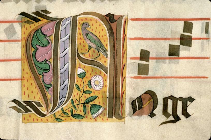 Graduel - Fleurs/Oiseau_0