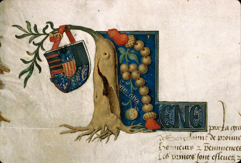 Lettres d'anoblissement accordées à Jehannon Roy - Armes de René d'Anjou, comte de Provence et roi de Sicile_0