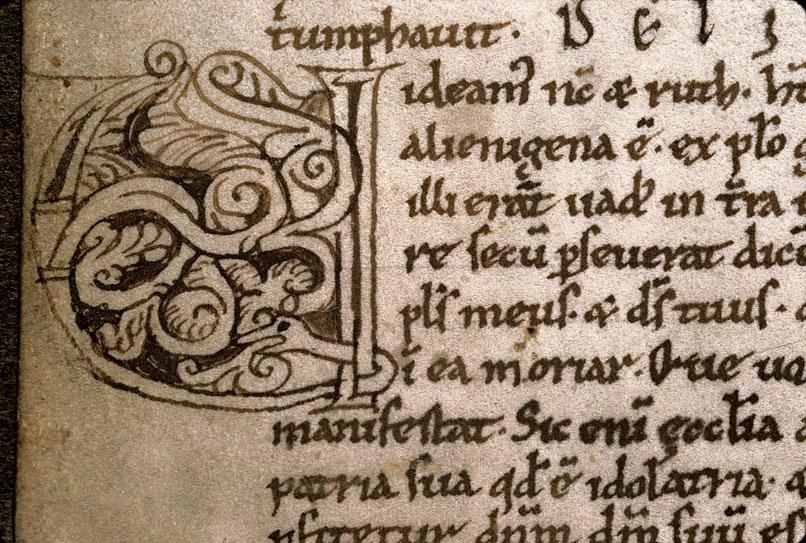 Comment. in Vetus Testamentum