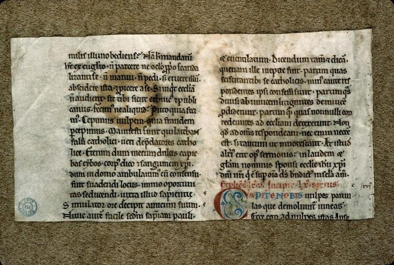Sermones in Cantica Canticorum (fragment)