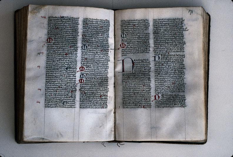 Supplementum Magistrutiae seu Pisanellae - Initiales_0