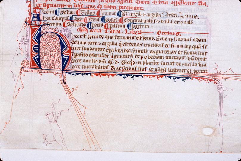 Laudibus beatae Mariae Virginis (De)