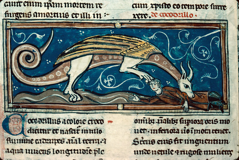 Bestiaire - Crocodile dévorant un homme_0