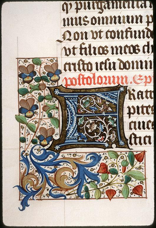 Epistolier à l'usage des ermites de saint Augustin d'Amiens - Initiale ornée_0