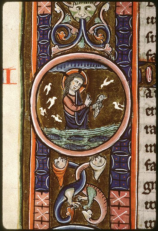 Bible (partie de) - Création des oiseaux et des poissons_0