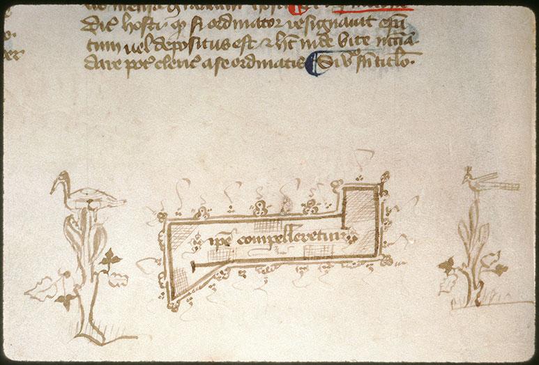 Novella in Decretales Gregorii VIIII - Oiseaux dans des végétaux_0