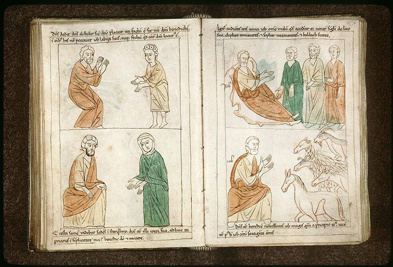 Bible en images - Bétail rendu à Job_0