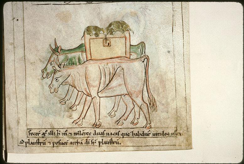Bible en images - Transport de l'Arche d'alliance à Bet-Shémesh_0