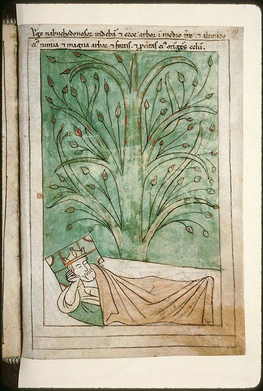 Bible en images - Songe de Nabuchodonosor : l'arbre_0