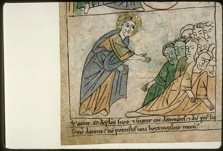 Bible en images - Jésus et ses disciples endormis_0