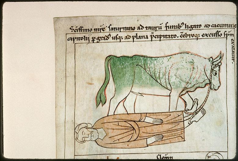 Bible en images - Martyre de saint Sernin_0