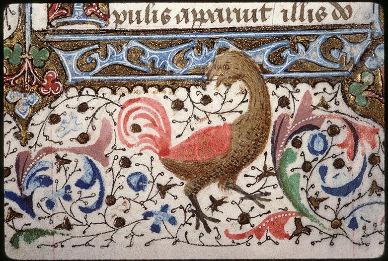 Heures à l'usage de Paris - Hybride anthropomorphe/Oiseau_0