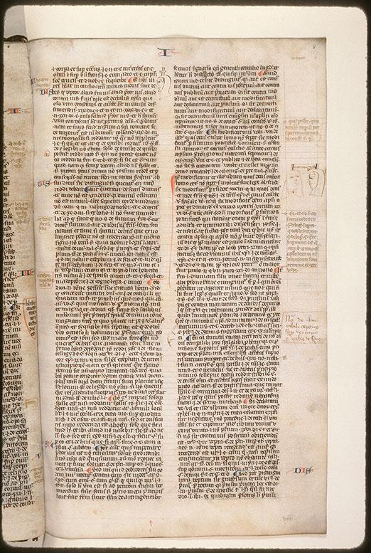 Summa super titulis Decretalium - Tête d'homme_0