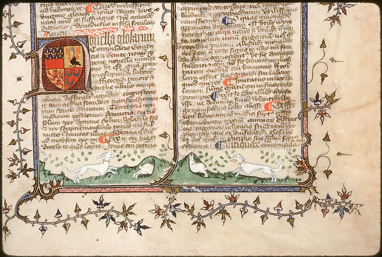 Novella in Decretales Gregorii VIIII - Chiens poursuivant des lapins_0
