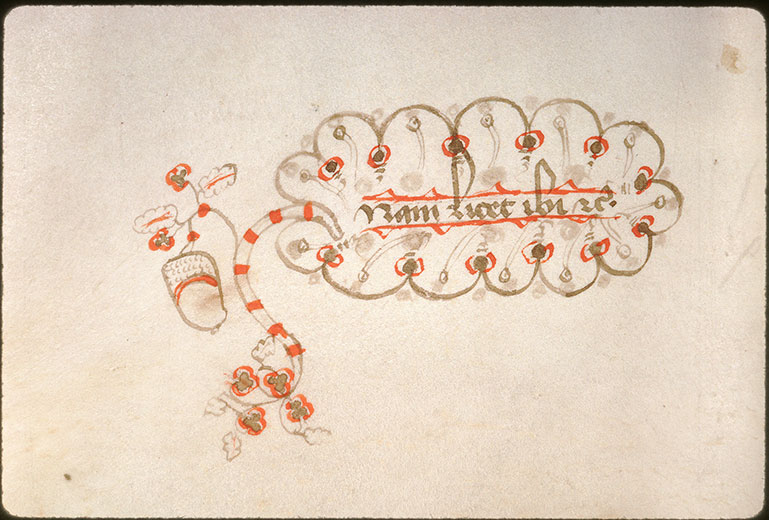 Novella in Decretales Gregorii VIIII - Feuille et gland_0
