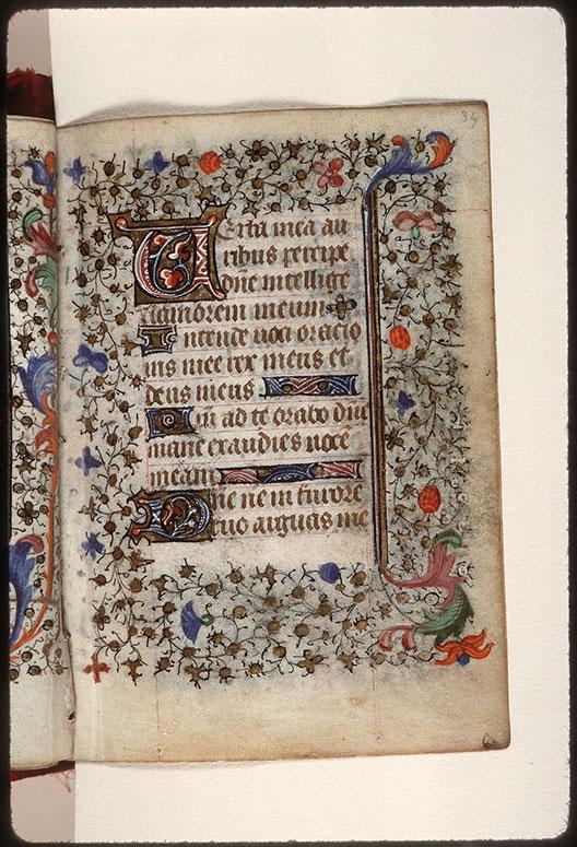 Heures à l'usage de Troyes - Pages décorées_0