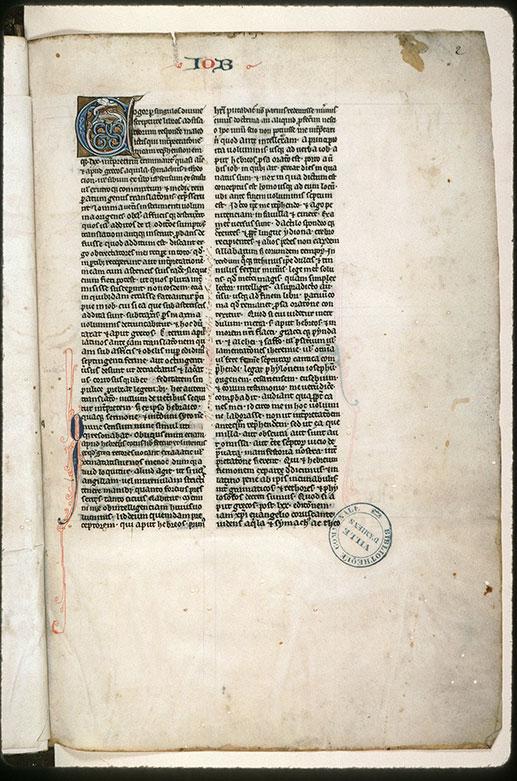 Bible glosée (partie de) - Hybride zoomorphe_0