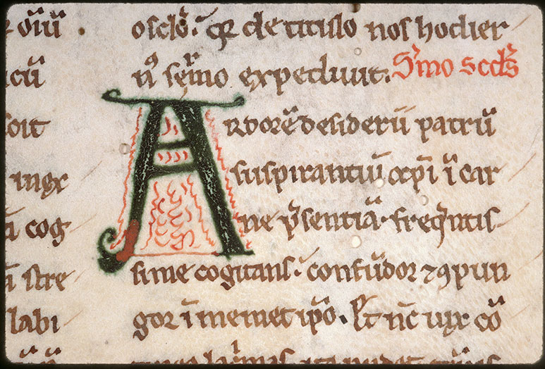 Sermones in Cantica Canticorum - Initiale filigranée_0