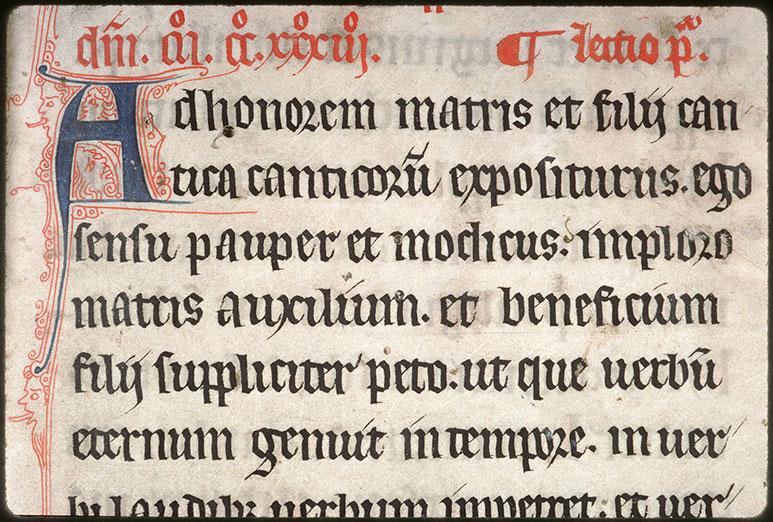 Comment. in Cantica Canticorum