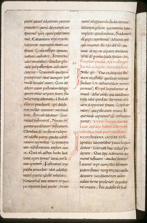 Homiliae in Evangelia - Initiales de couleur ornées_0