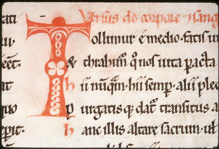 Expositio in Epistulas Pauli ex operibus Augustini - Initiale de couleur ornée_0
