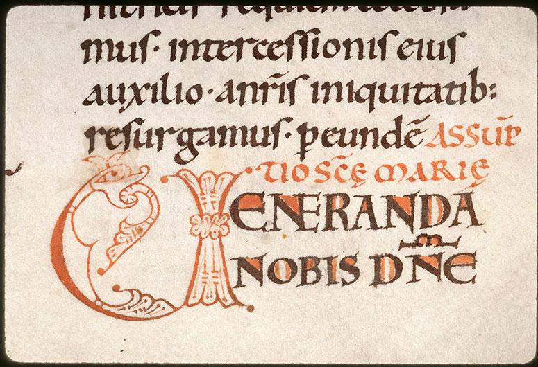 Missel à l'usage de l'abbaye Saint-Pierre de Corbie/Psautier - Hybride zoomorphe crachant des végétaux_0