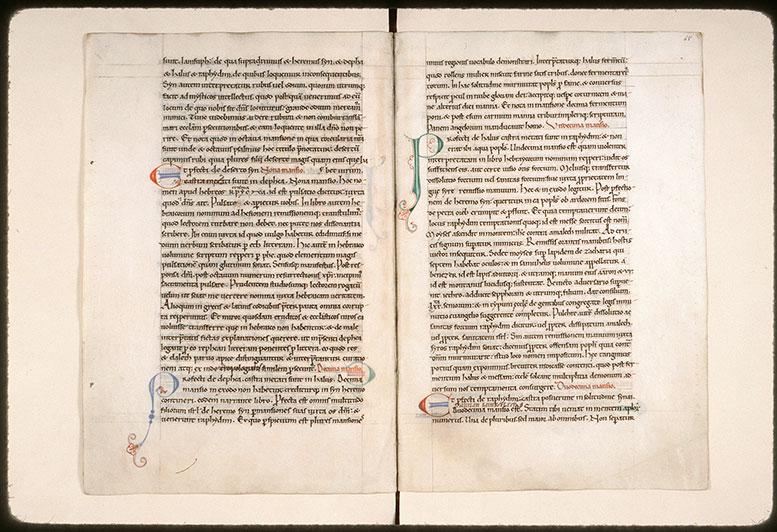Epistulae/Opuscula - Initiales ornées et filigranée_0