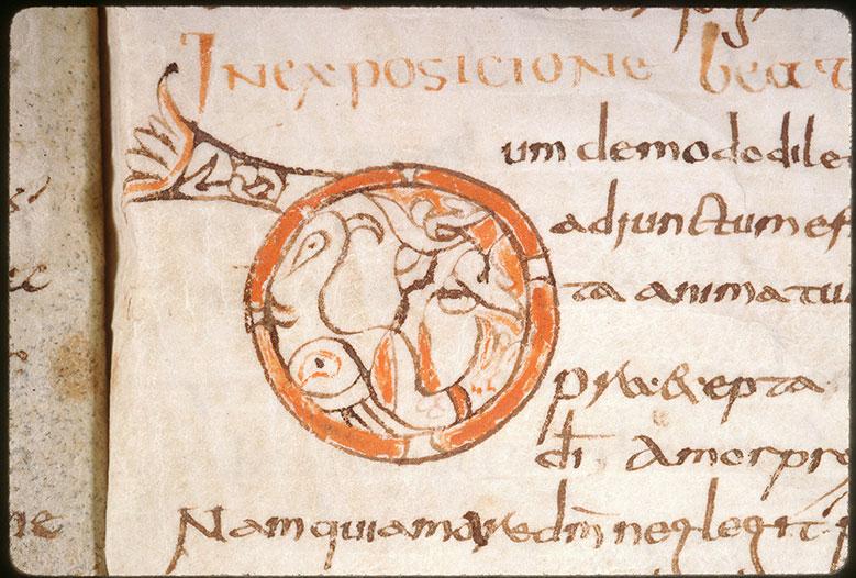 Liber de expositione Veteris et Novi Testamenti - Oiseau_0