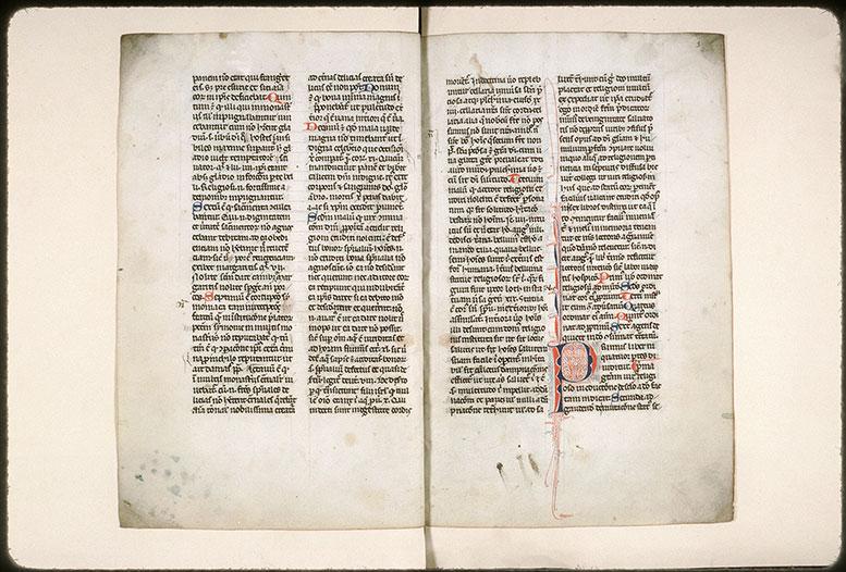 Eruditione religiosorum (De) - Initiale filigranée_0