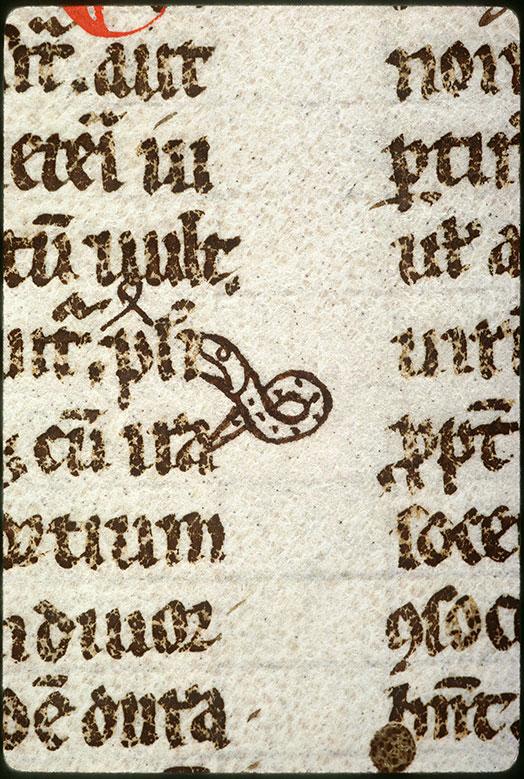 Digestum vetus - Serpent_0