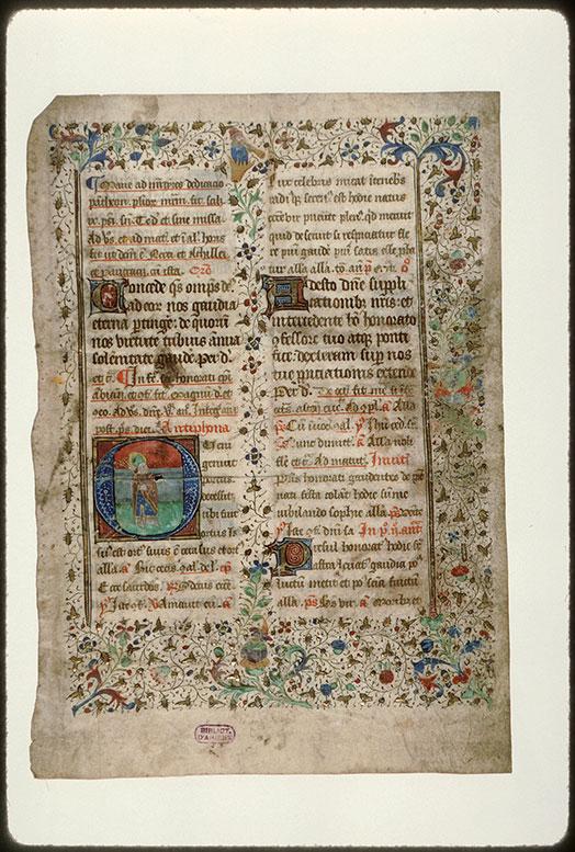 Bréviaire à l'usage d'Amiens (fragment) - Page décorée_0