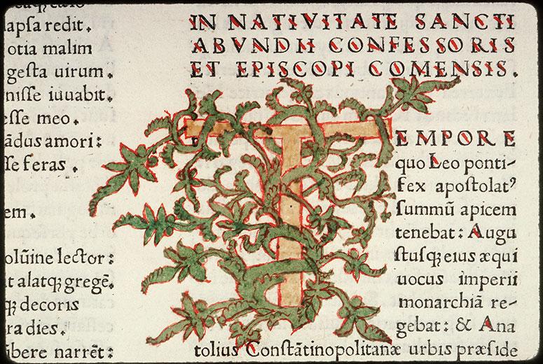 Sanctuarium sive vitae sanctorum - Végétal_0