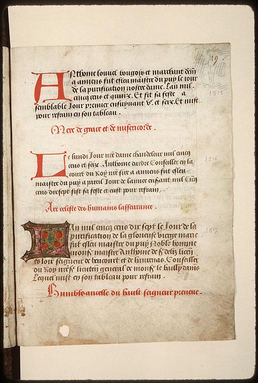 Registre des maîtres de la confrérie Notre-Dame du Puy d'Amiens - Fraises_0
