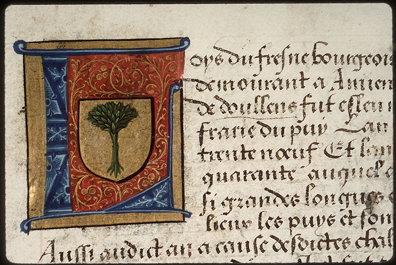 Registre des maîtres de la confrérie Notre-Dame du Puy d'Amiens - Armes de Louis du Fresne_0