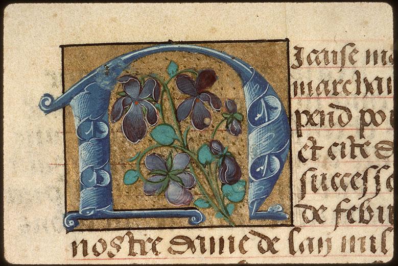 Registre des maîtres de la confrérie Notre-Dame du Puy d'Amiens - Iris_0